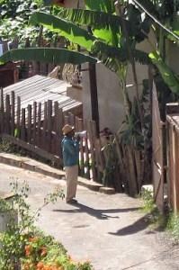 Madagaskar, Afrika, Ausrufer