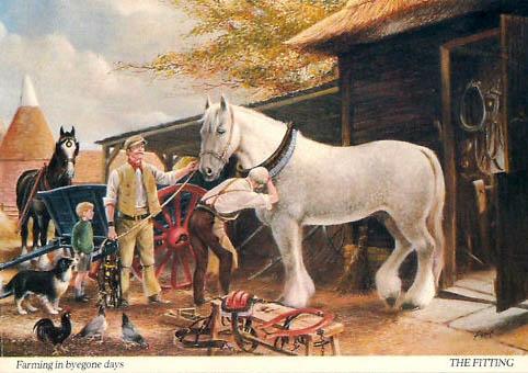 farbige Abbildung: Sattler passt dem Pferd das Zaumzeug an