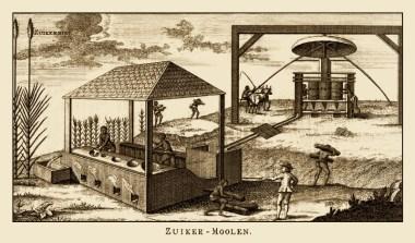 Zuckerherstellung, Zuckermühle, Zuckersiederei, Zuckerrohr