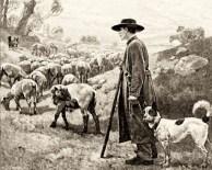sw-Zeichnung: schäfer mit seinem Hütehund beim Schafe hüten