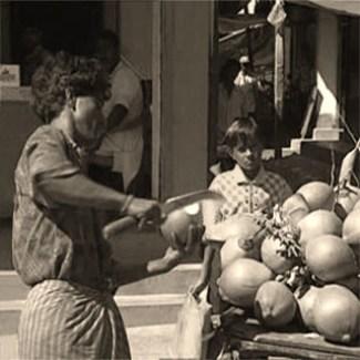 Obsthändler, Verkauf, Vietnam