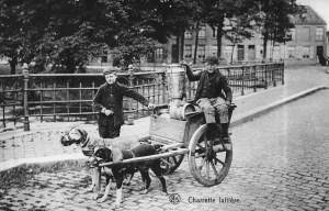 Milchkarren, Milchhändler, Hundekarren, Belgien