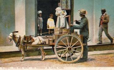Milchhändler Ziegenkarren Kuba