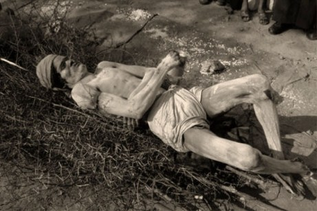 sw Foto: Mann liegt rücklinks auf Dornengestrüpp