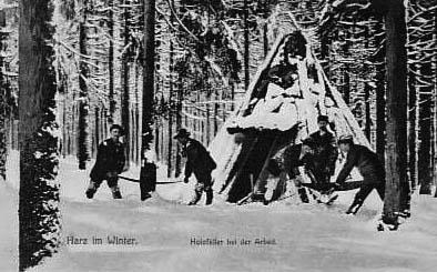 sw-Foto: Holzfäller bei der Arbeit im verschneiten Wald