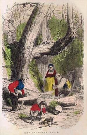 ausgemalte Zeichnung: Holzfällerfamilie - zersägen einen Stamm