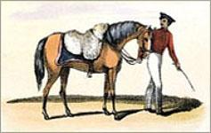 kl. kolorierter Stich: Händler führt mit wolle beladenes Pferd am Zaum