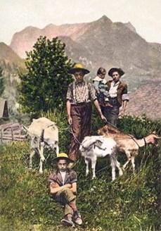 kolorierte Fotopostkarte: junge Ziegenhirten mit Ziegen an der Leine - 1907, Schweiz