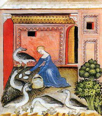 Buchmalerei: Frau holt Eier von Gänsen aus Innenhof - 1390