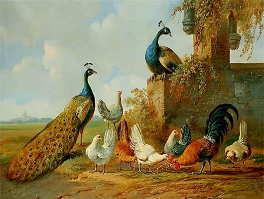 Gemälde: Pfauenpaar und Hühner in Park - 1882