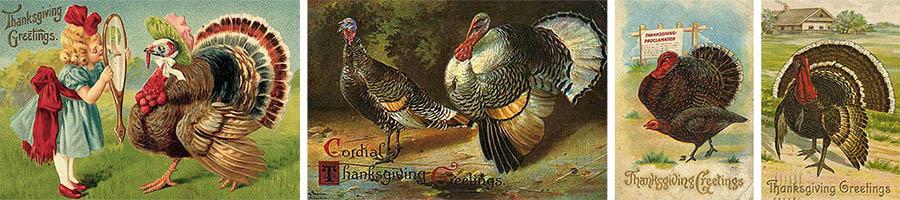 Grußkarten: gemalte Truthahnmotive ~1900, USA