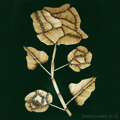 Farbfoto: auf Samt geklebte Rose aus Streichhölzern