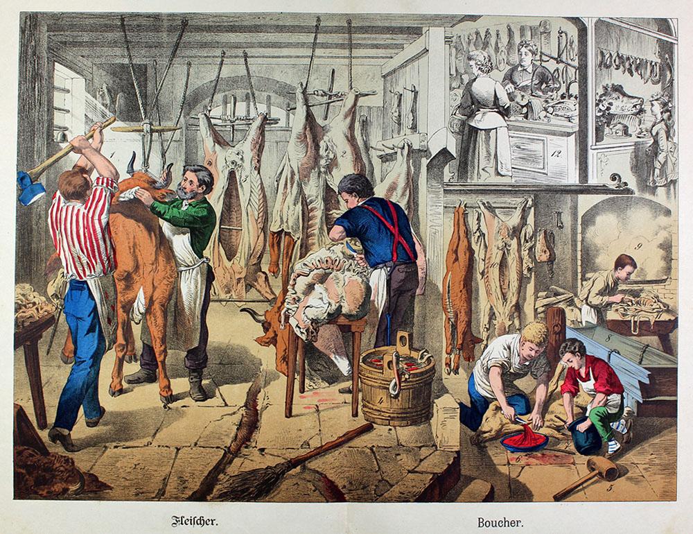 großes Schaubild: Tiere schlachten, Fleisch zerteilen und verkaufen