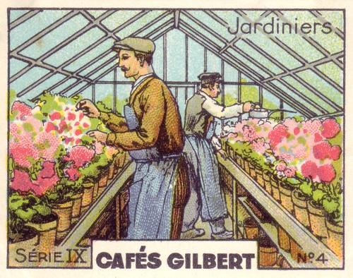 Sammelbild: Gärtner im Gewächshaus