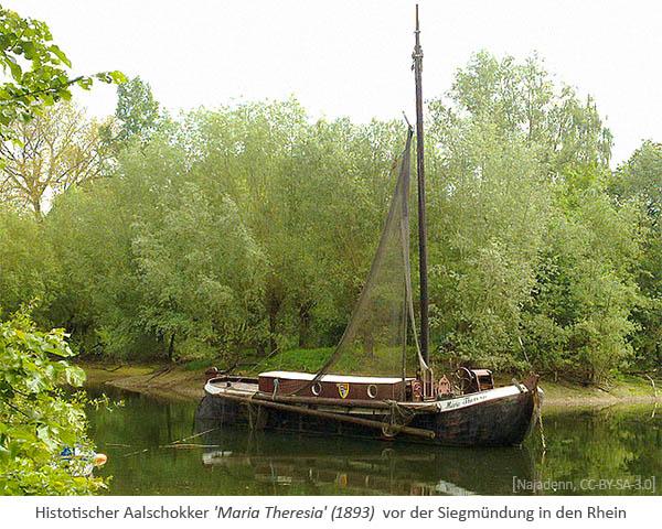 Farbfoto: Aalschokker 'Maria Theresia' (1893) vor der Siegmündung in den Rhein