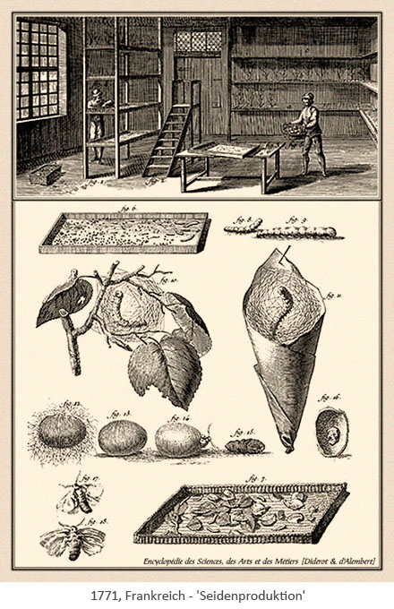 Kupferstich: Seidenzüchter & Seidenproduktion - 1771, FR