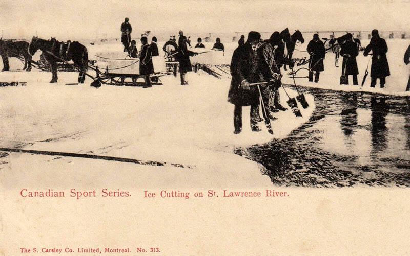 Postkarte: viele Eisschneider beim Eisheraussägen