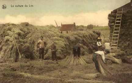 Postkarte: Arbeiter bündeln und stapeln Flachsstengel