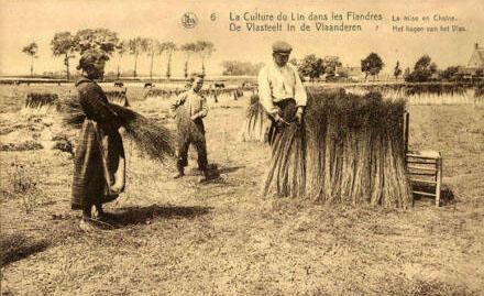 Postkarte: Bündeln des Flachses