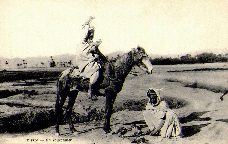 alte Foto-PK: zwei Falkner, einer zu Pferd