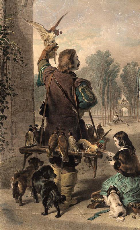 Mann mit vielen Falken auf einem Körpergestell