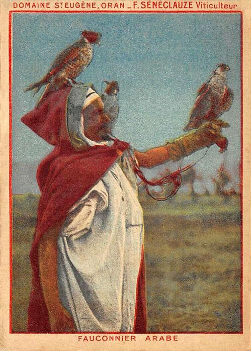 alte Abbildung: Falkner im Cape mit drei Falken