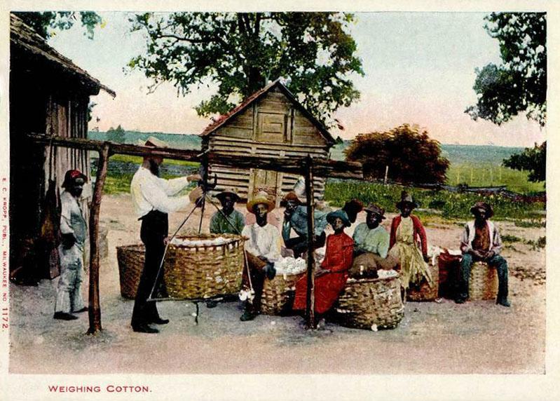farbige Postkarte: Mann wiegt Baumwolle ab, Arbeiter warten