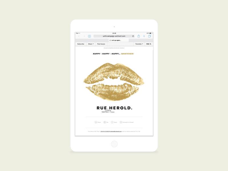 Newsletter vœux animés 2017 pour la Rue Hérold. Béryl, design graphique.
