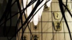 lion-01-shogi