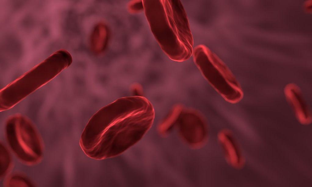 hepatitis B transmission cure treatment