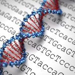 vacunas ARN mensajero modificar ADN