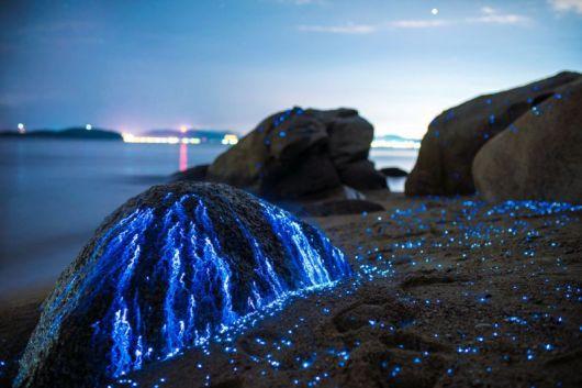 الصخور الباكية في اليابان