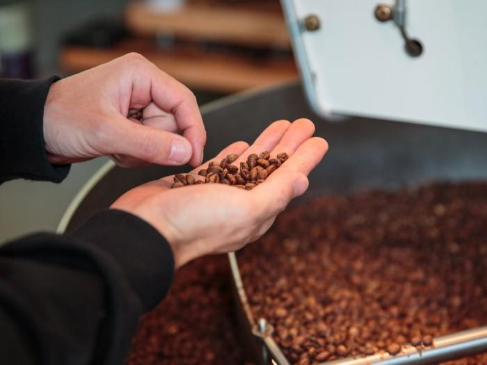 هل توشك القهوة على الانقراض ؟