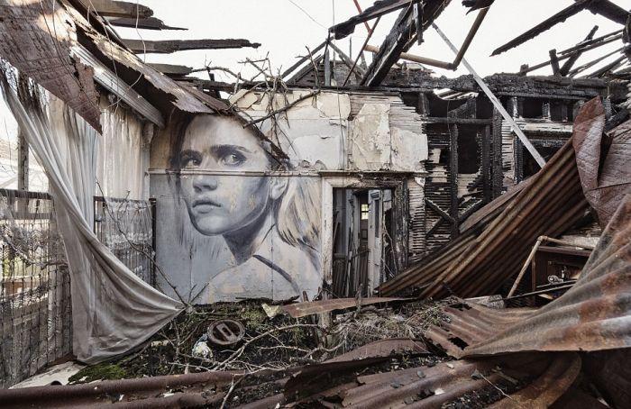 فنان أسترالي يبث الحياة إلى البيوت المهجورة بجداريات فنية رائعة