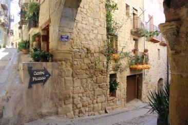 Picasso in Horta de Sant Joan