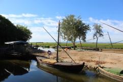 Vela Latina boat