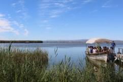 Boat excursion from El Palmar
