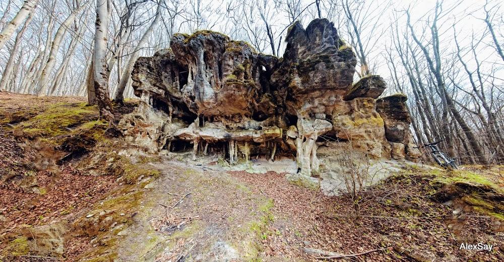DSC_7669 Panorama