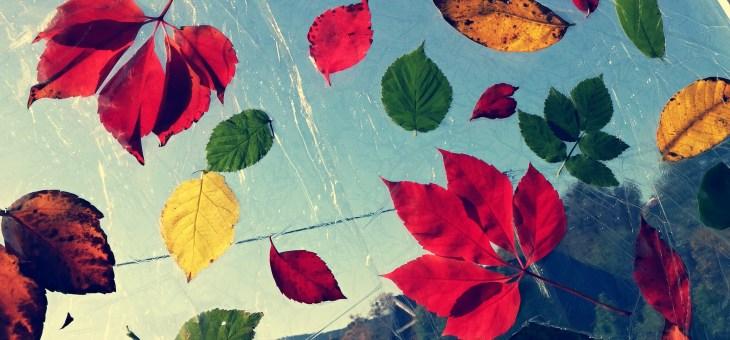 Podzimní…