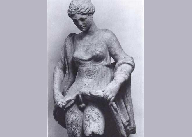 Hermafrodit, foto: Wikipedia