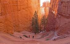 Bryce Canyon Switchback