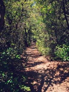 Spring-path