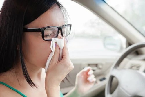 Zimt gegen Atemprobleme