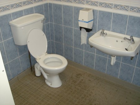 Family Room - Toilet and Wash-hand Basin