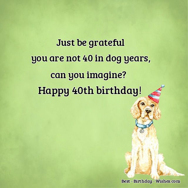 40th Birthday Wishes   Funny & Happy Messages & Quotes for their 40th
