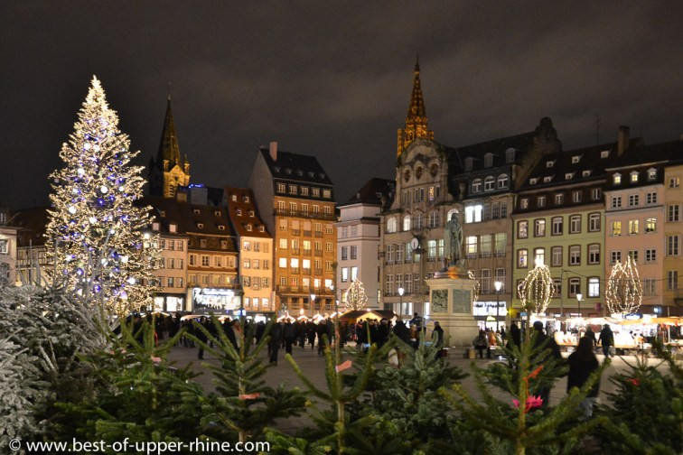 The giant Christmas tree on Kleber square in Strasbourg