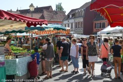 Strolling on the market in Alsace