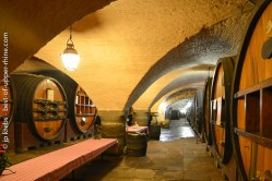 The cellar of Hospices de Strasbourg.