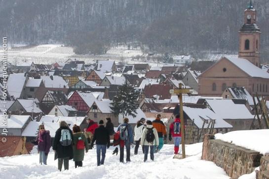 Winter hiking in the vineyards around Riquewihr.