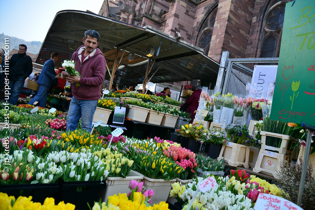 Flowers are back on open air markets